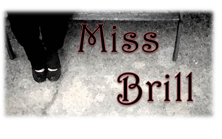 """lonely miss brill the eavesdropper There is no point in mansfield's story where miss brill has a human companion instead, she resorts to personifying her fur as her """"little rogue."""